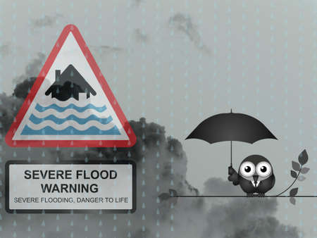 deluge: Bird with severe flood warning sign against a dark cloudy skyscape Stock Photo