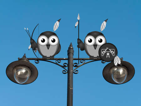 roost: Native Americans perched on a lamppost against a clear blue sky