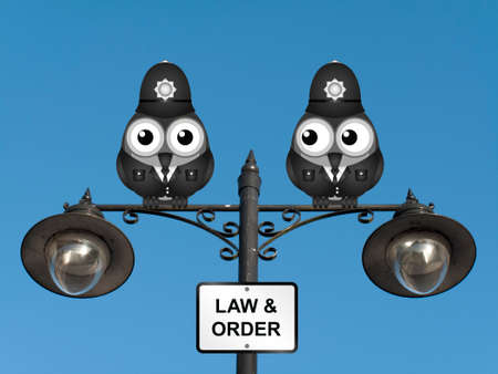 lawman: Comical United Kingdom bird policemen perched on a lamppost against a clear blue sky