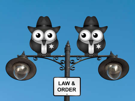 Comical United States of America bird policemen perched on a lamppost against a clear blue sky