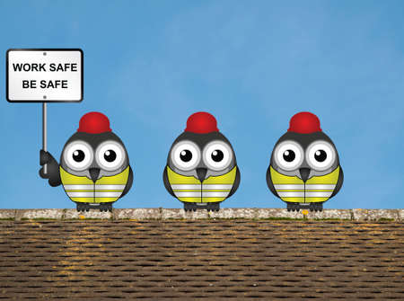 rooftop: Work safe be safe health and safety message with construction worker birds wearing personal protection equipement perched on a rooftop against a clear blue sky Stock Photo