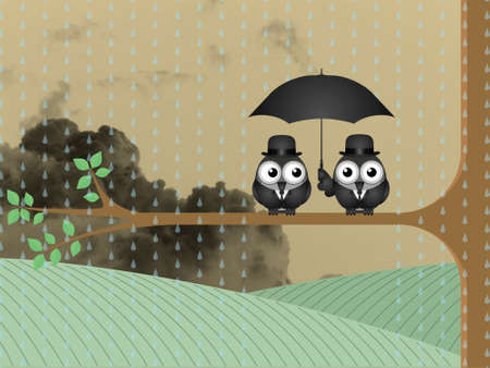 storm clouds: Birds sheltering from the rain under an umbrella against a cloudy sky backdrop