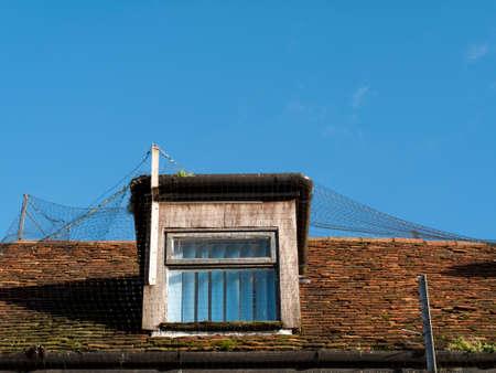 deterrent: Rooftop dorma window with anti bird netting deterrent Stock Photo