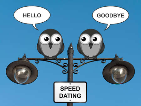 speed dating: Comical speed dating birds perched on a lamppost against a clear blue sky