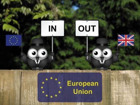 remain: Comical bird campaigners for the United Kingdom in or out European Union referendum perched on a wooden fence Stock Photo