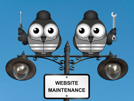 mend: Comical website maintenance bird engineers perched on a lamppost against a clear blue sky