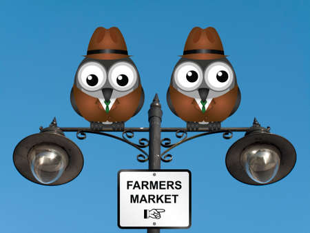 comical: Comical bird farmers perched on a lamppost against a clear blue sky