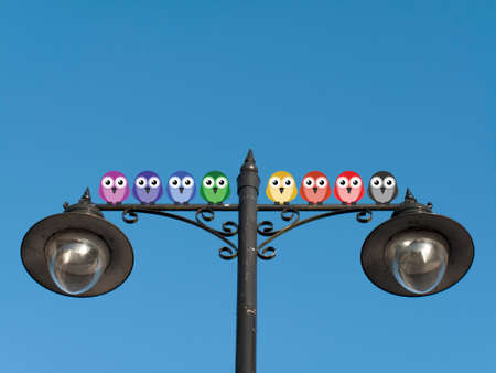 racial diversity: Representation of multiculturalism in society with different coloured birds perched on a lamppost against a clear blue sky with copy space for own text
