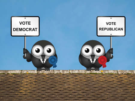 electioneering: Comical Democrat and Republican bird politicians perched on a rooftop against a clear blue sky