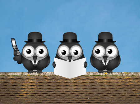 sell shares: Comical business city trader birds perched on a rooftop against a clear blue sky