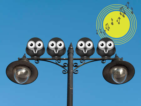 sunup: Comical bird boy band singing the dawn chorus perched on a lamppost against a clear blue sky