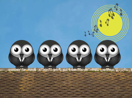 sunup: Comical bird boy band singing the dawn chorus perched on a rooftop against a clear blue sky
