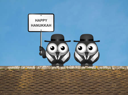 jews: Hanukkah The Festival of Lights with Jewish Rabi birds perched on a rooftop against a clear blue sky