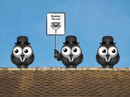 moggie: Comical beware the cat sign with watchful birds perched on a rooftop against a clear blue sky