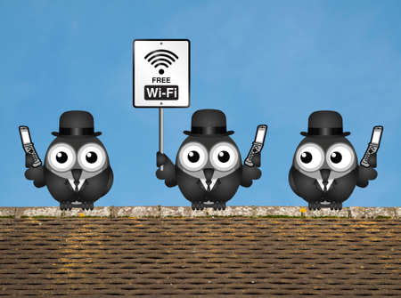 rooftop: Comical birds on their mobile phone utilising free Wi Fi perched on a rooftop against a clear blue sky