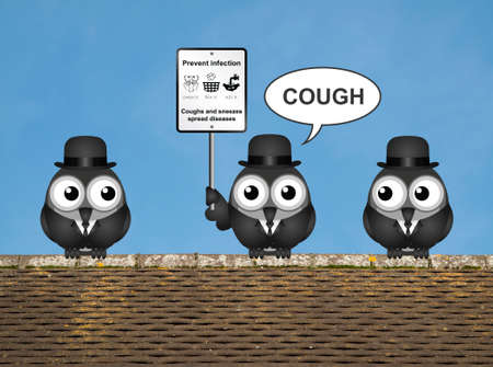 flu prevention: Comical flu and cold prevention sign with birds perched on a rooftop against a clear blue sky