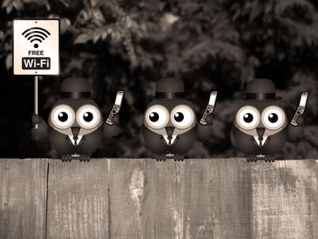 comical: Sepia comical birds on their mobile phone utilising free Wi Fi perched on a timber garden fence against a foliage background Stock Photo