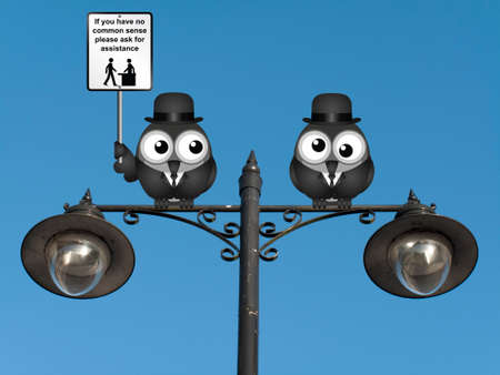 a sense of: Comical common sense sign with birds perched on a lamppost against a clear blue sky
