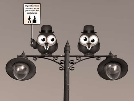 a sense of: Sepia comical common sense sign with birds perched on a lamppost against a clear blue sky Stock Photo