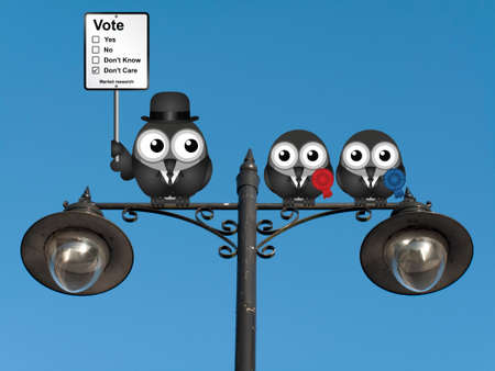 electioneering: Comical market research voting intention sign with birds perched on a lamppost against a clear blue sky Stock Photo