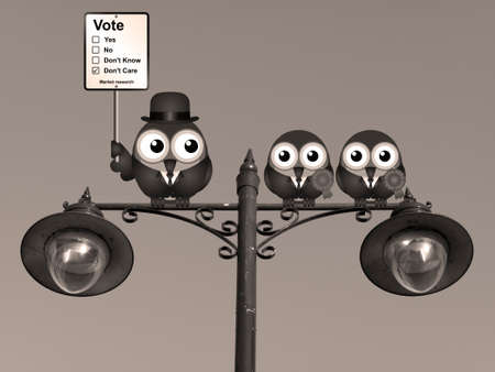 mp: Sepia comical market research voting intension sign with birds perched on a lamppost