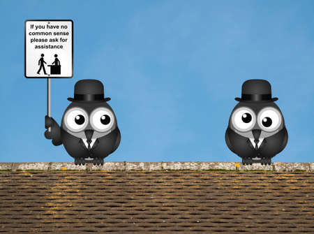a sense of: Comical common sense sign with birds perched on a rooftop against a clear blue sky