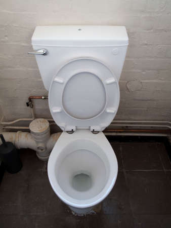 grubby: Grubby toilet with lid and seat up