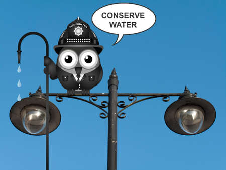 water bird: Bird fireman with conserve water message perched on a lamppost against a clear blue sky