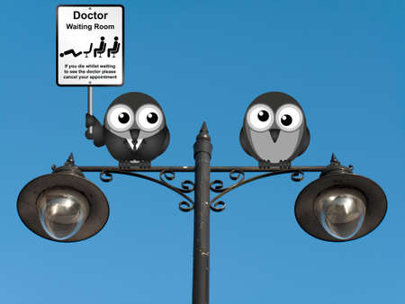 nhs: Comical doctor waiting room sign with doctor and patient birds perched on a lamppost against a clear blue sky