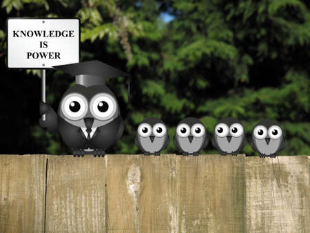 academia: Knowledge is power sign with bird teacher and students perched on a wooden fence