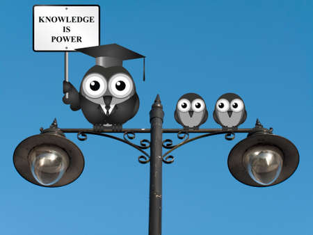 knowledgeable: Knowledge is power sign with bird teacher and students perched on a lamppost against a clear blue sky Stock Photo