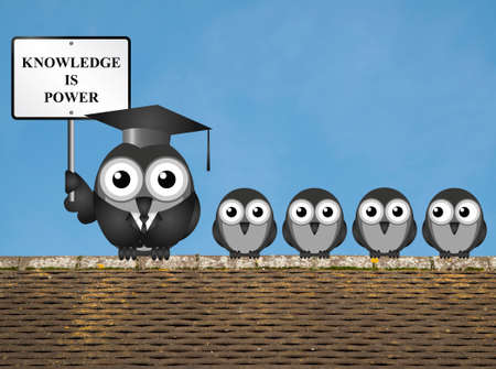knowledgeable: Knowledge is power sign with bird teacher and students perched on a rooftop against a clear blue sky Stock Photo