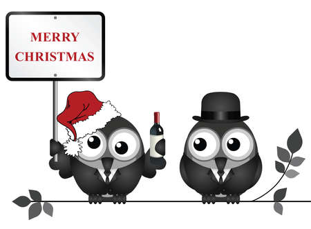 inebriated: Drunken bird reveller at the office party with Merry Christmas sign perched on a branch isolated on white background