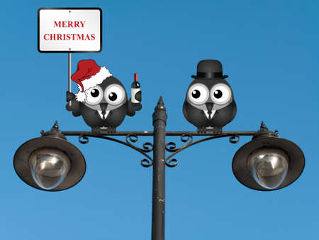 inebriated: Drunken bird reveller at the office party with Merry Christmas sign perched on a lamppost against a clear blue sky
