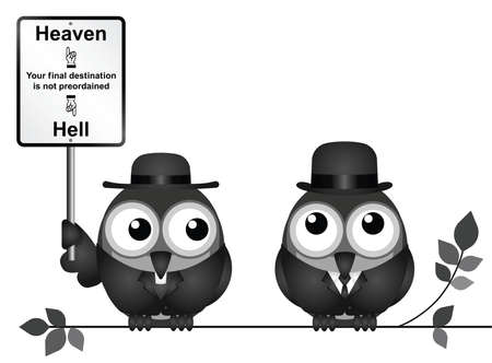 clergyman: Bird vicar with destination heaven or hell sign and worried businessman perched on a branch isolated on white background