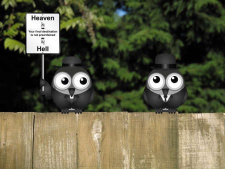 cleric: Bird vicar with destination heaven or hell sign and worried businessman perched on a wooden fence