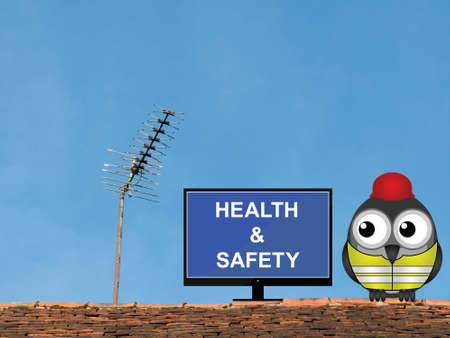 Comical bird construction worker watching health and safety induction programme perched on a rooftop against a clear blue sky Stock Photo