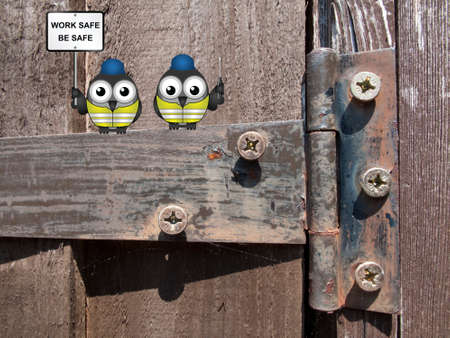 doorframe: Comical bird construction workers perched on an old rusty hinge with health and safety message work safe be safe sign