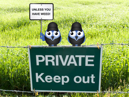 comical: Comical birds with keep out unless you have weed sign perched on a private keep out sign