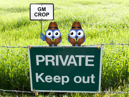genetically modified crops: Farmers growing genetically modified crop in their field perched on a private keep out sign Stock Photo