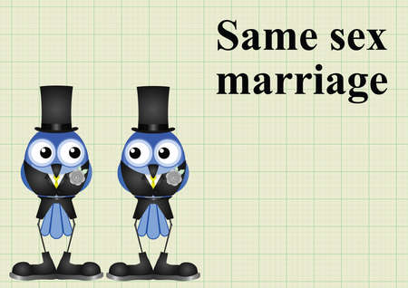 homosexual sex: Male same sex marriage on graph paper background with copy space for own text