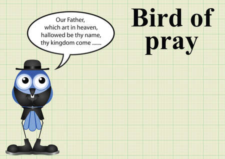 comical: Comical bird of pray vicar on graph paper background with copy space for own text Illustration
