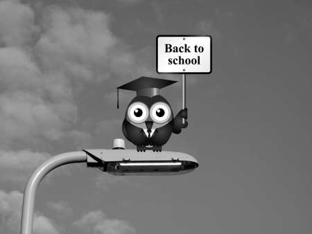 Comical bird teacher with back to school sign sat on a lamp post against a sky background Stock Photo