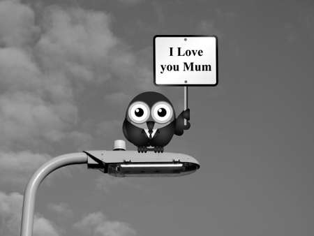to adore: Comical bird with I Love you Mum sign sat on a lamp post against a sky background Stock Photo