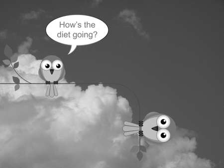 Monochrome fat bird on an unsuccessful diet against a cloudy sky Stock Photo