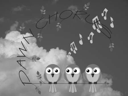 chorus: Monochrome bird dawn chorus twig text against a cloudy sky