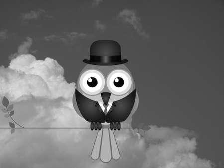 industrialist: Monochrome comical Businessman bird sat on a tree branch against a cloudy sky