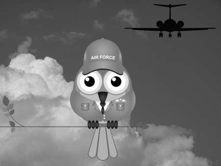 airman: Monochrome comical bird Airman sat on a tree branch against a cloudy sky