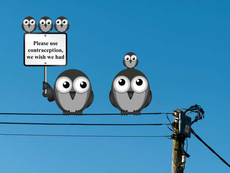 contraception: Comical family of birds with use contraception message perched on electrical cables