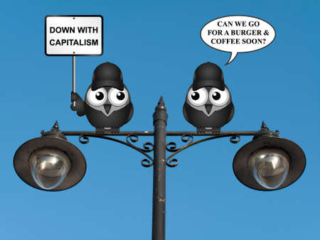 lobbyists: Comical contradictory anti capitalism bird protesters demonstrating